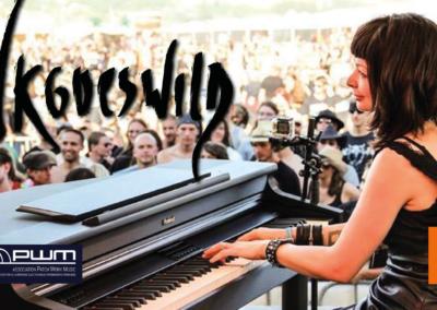 SynthFest France Concert Vkgoeswild