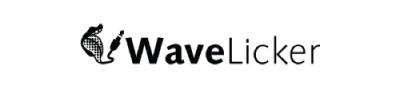 SynthFest Partenaire WaveLicker